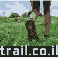 logo ofir small